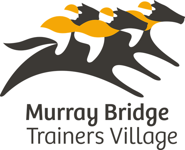 murray bridge trainers village logo